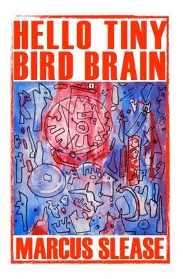 Hello Tiny Bird Brain.jpg